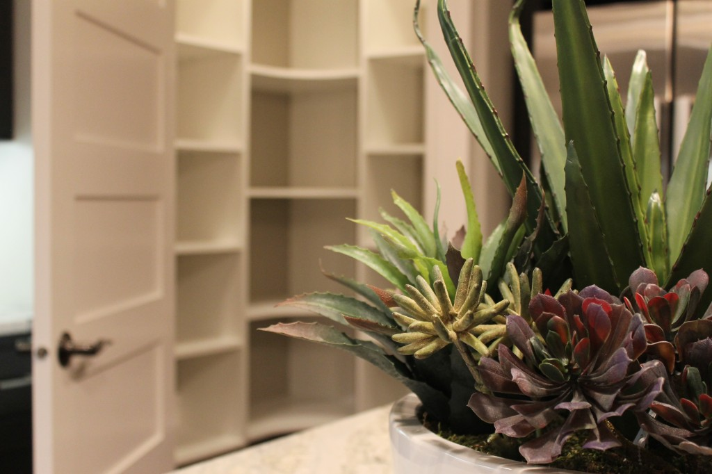 MO kitchen3