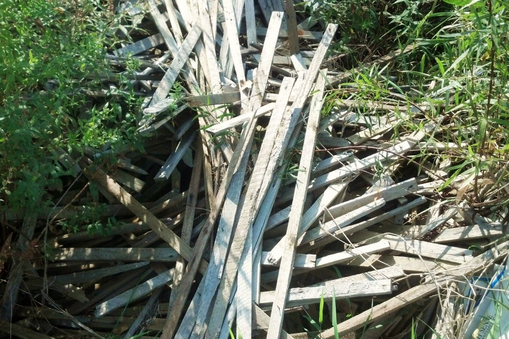 lath in field