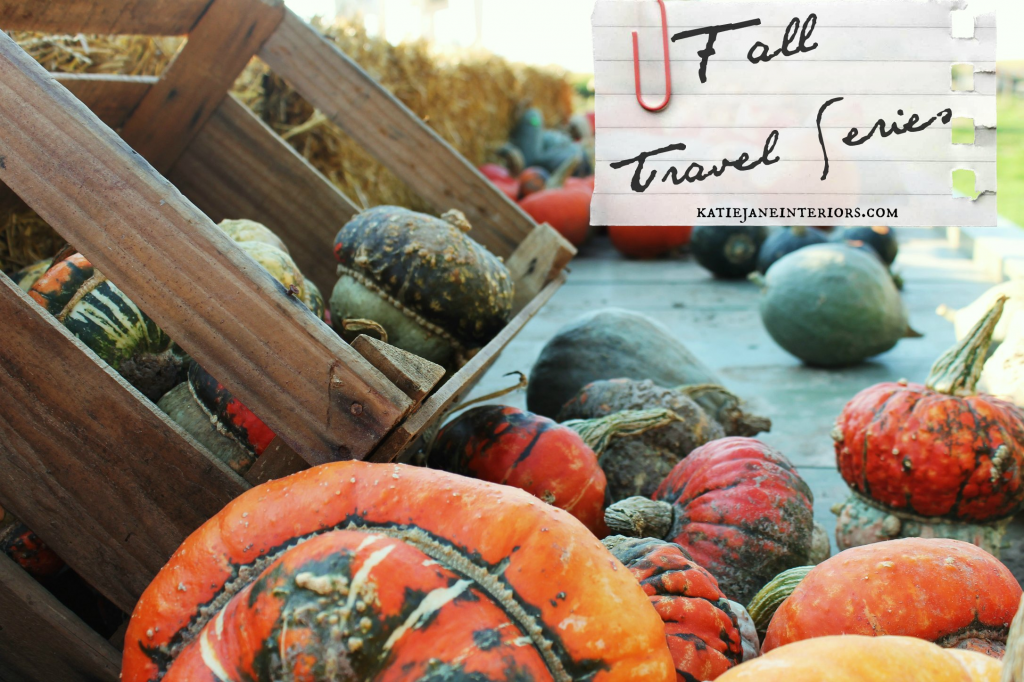 fall travel series pumpkins