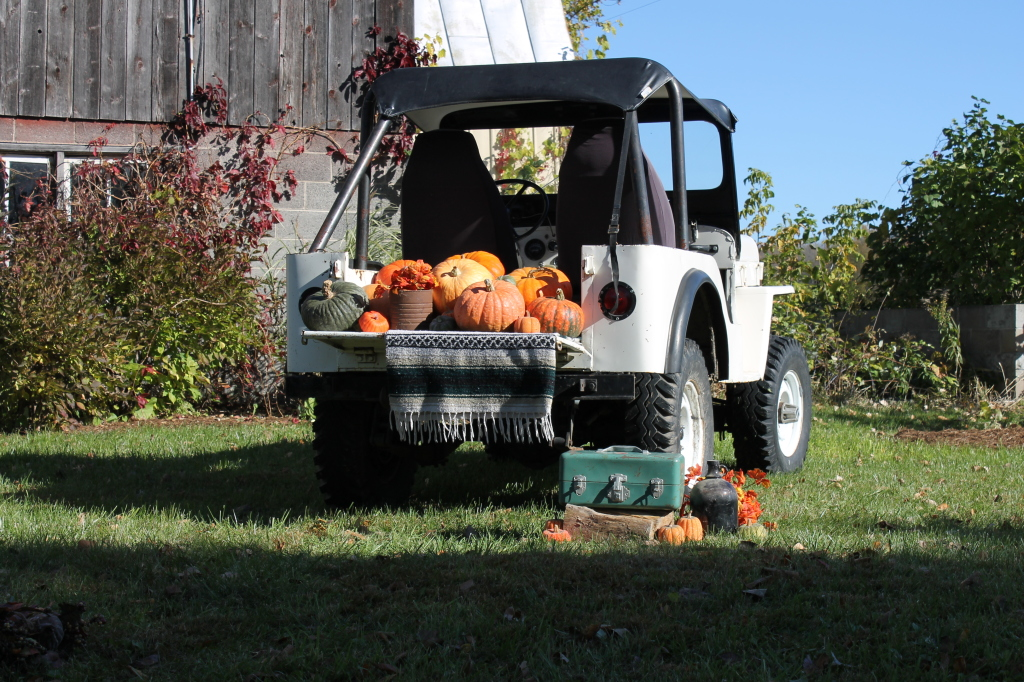 jeep pumpkin shoot