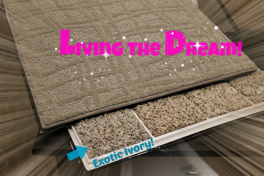 horton carpet living the dream2
