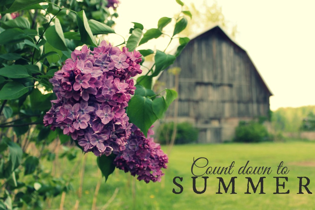 lilac countdown to summer