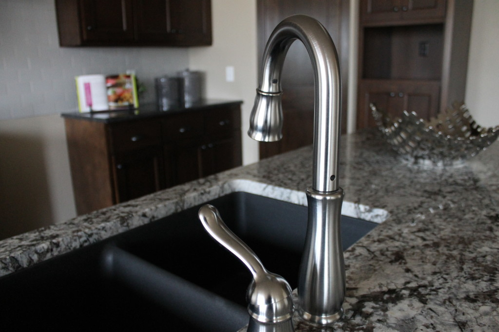 evergrn kitchen faucet