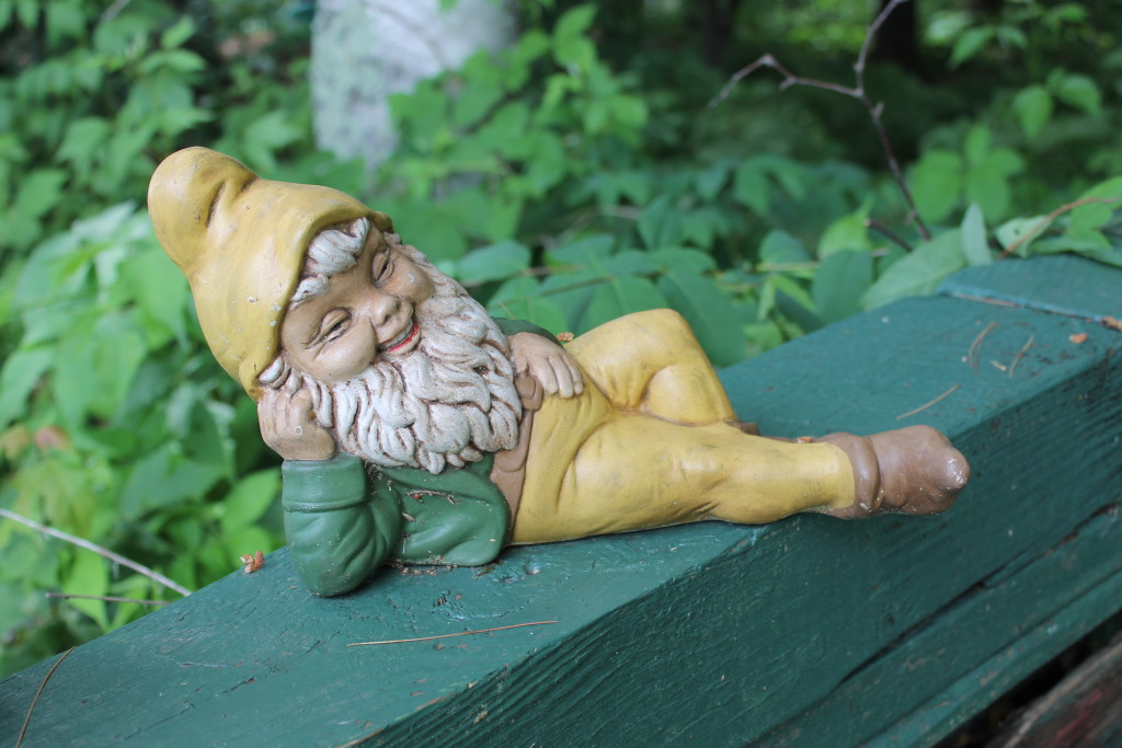 The gnomes of Squash Lake (2)