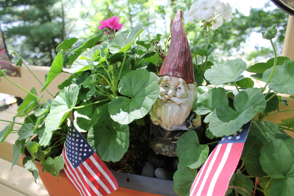 The gnomes of Squash Lake (4)