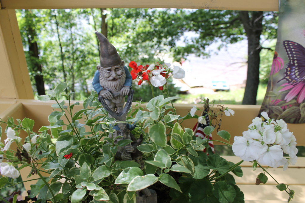 The gnomes of Squash Lake (5)