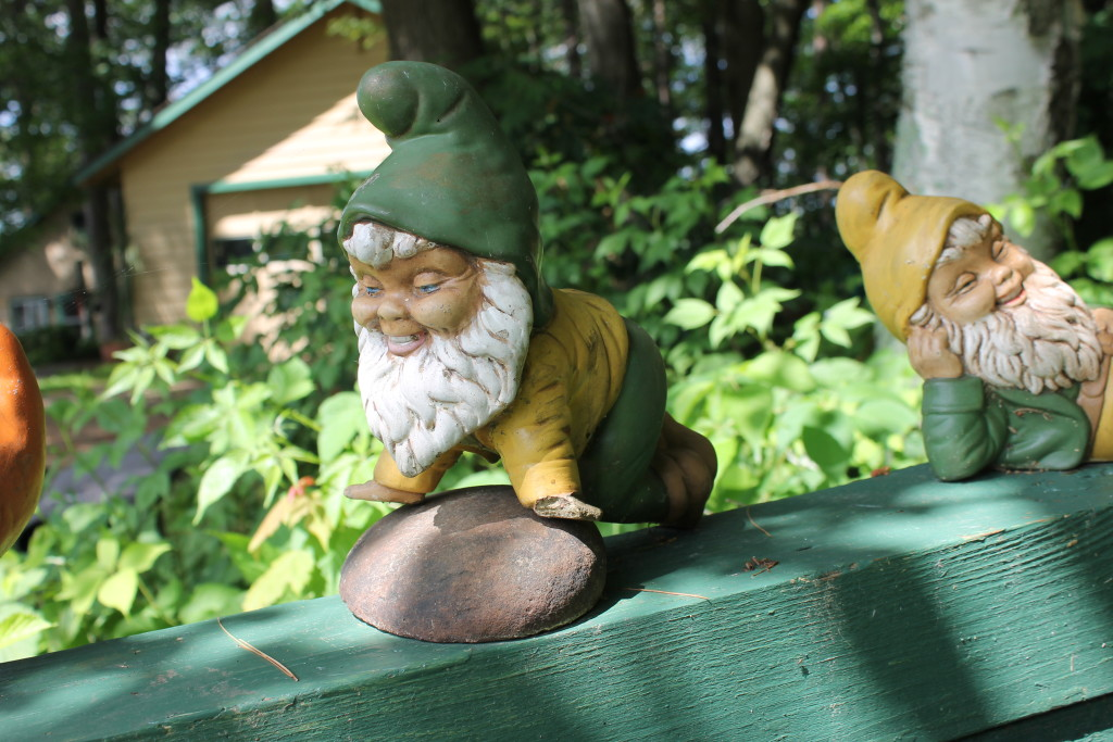 The gnomes of Squash Lake (6)