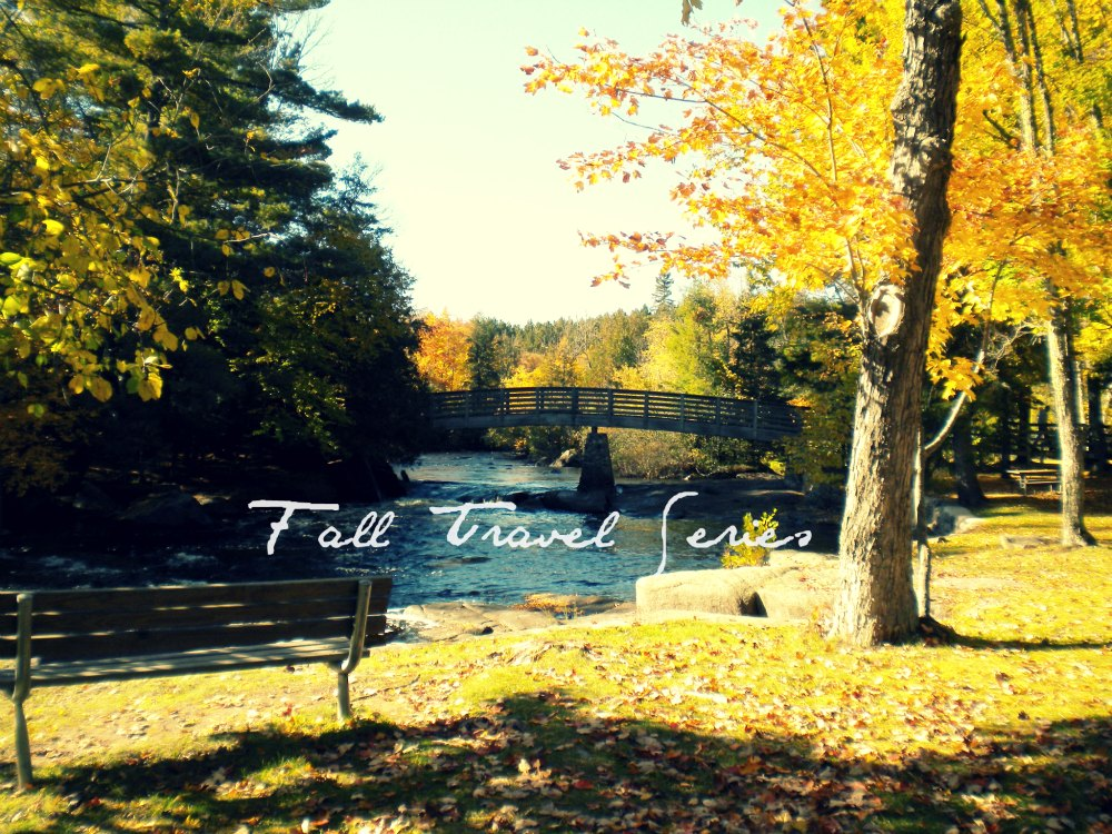 fall travel series bridge in goodman park