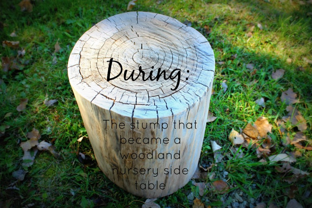 stump table during